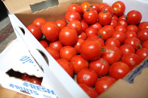 Tomatoes: An Addiction (Early Girl Tomato Sauce)