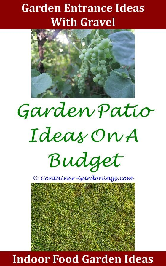7+ All Time Best Grow Like A Pro With These Organic Gardening Tips Ideas