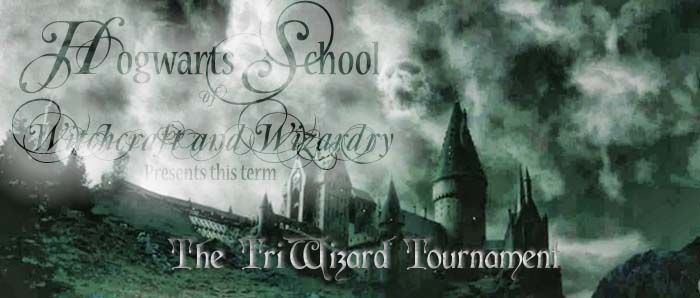 Harry Potter roleplaying site