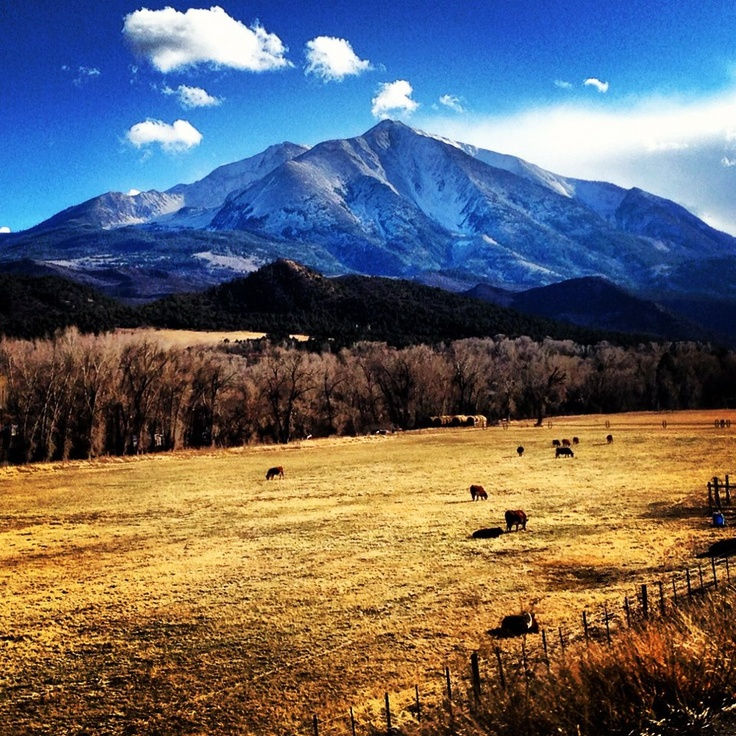 17 best images about carbondale colorado on pinterest for Mountain living