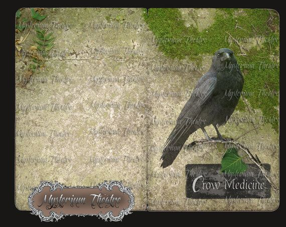 Crow Medicine Journal Pages Digital Download
