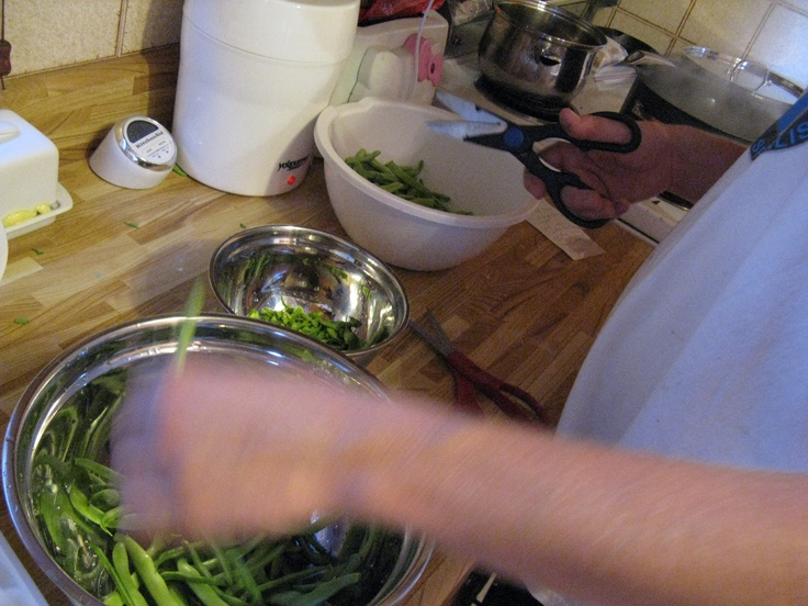 Nolan and I, blanching and freezing the green beans