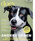 Die 7 Wege zur Motivation des Hundes - [dogs Magazin]
