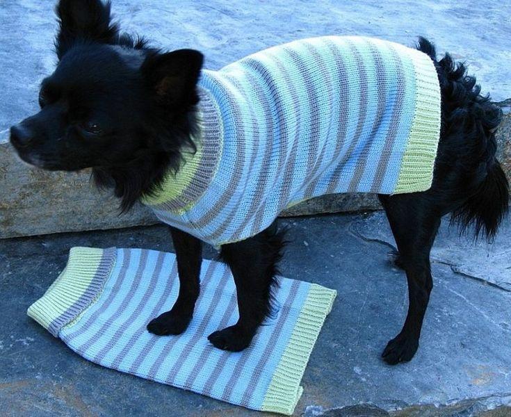 die besten 25 hundepullover stricken ideen auf pinterest hunde pullover stricken hundepulli. Black Bedroom Furniture Sets. Home Design Ideas