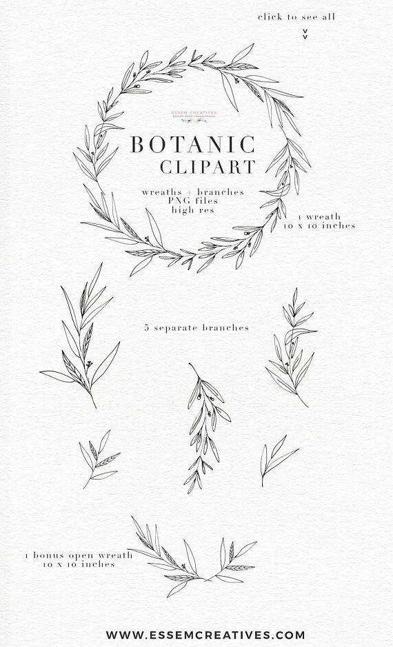 Botanical Clipart Illustration, Greenery Leaves Foliage, Dainty Fine Art Eucalyptus Olive Branch Line Art, Digital Wreath PNG Floral Clipart – Marion Nitsche