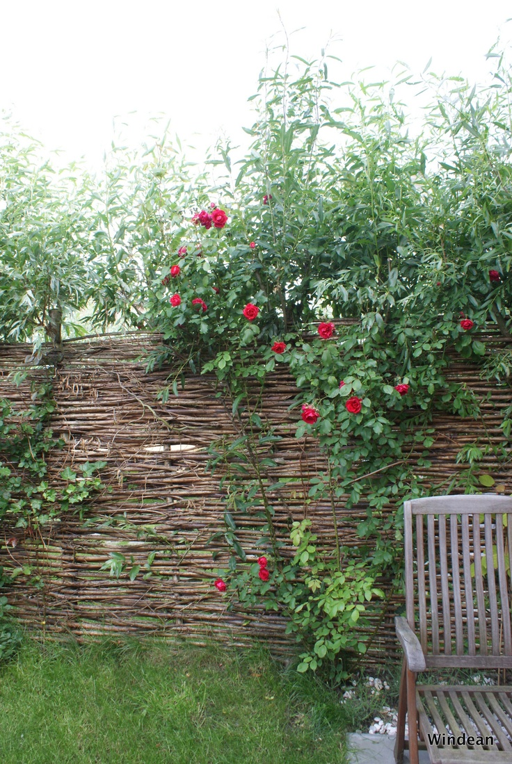 67 best amenagements exterieurs images on Pinterest | Garden ...