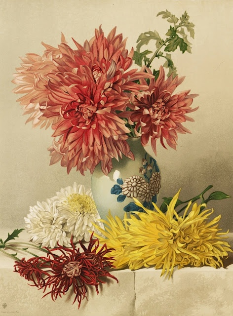 Chrysanthemums by Mary Elizabeth Duffield, 1883: