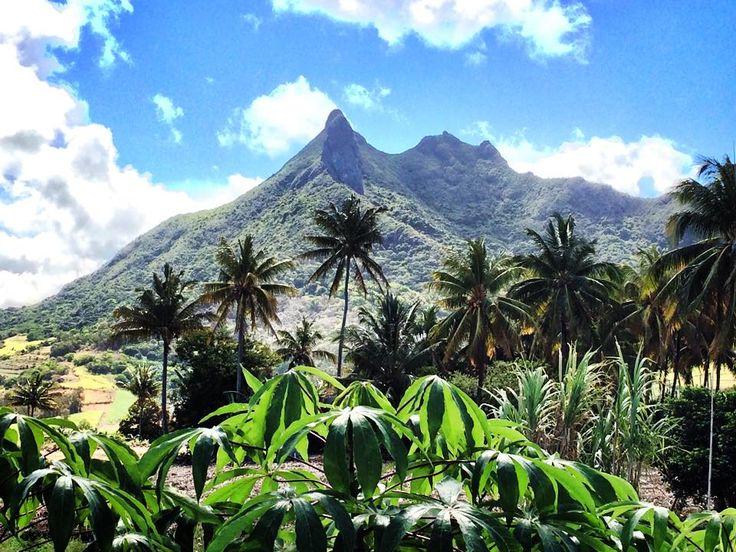 Rigogliosa natura a #Mauritius