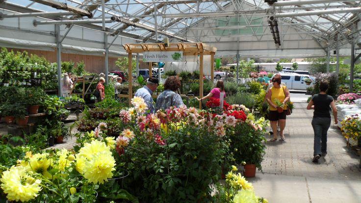 Spring open house new flower show