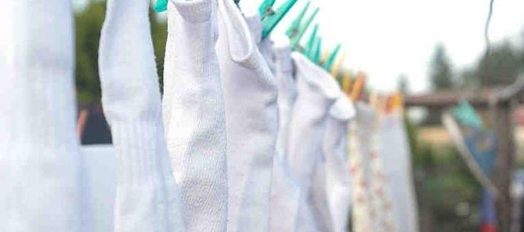 ¡Agregue este Polvo Blanco a Mi Lavadora y la Ropa Blanca por Fin lució Verdaderamente Limpia! http://ideaydetalle.com/agregue-este-polvo-blanco-a-mi-lavadora-y-la-ropa-blanca-por-fin-lucio-verdaderamente-limpia/ Add this White Powder to My Washing Machine and the White Clothes finally looked Truly Clean! #blanquearropablancaamarillentasincloro #comoblanquearlaropablancaconlejíaybicarbonato #comoblanquearlaropaconbicarbonato #comoblanquearlaropasincloro #comoblanquearlaropasincloro…
