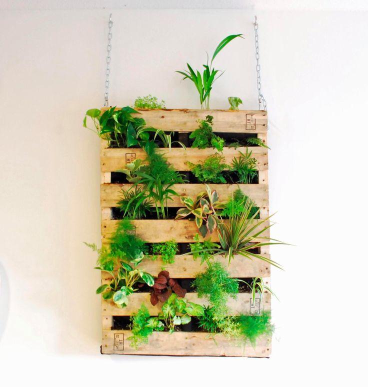 82 best pallet gardens images on pinterest pallet on indoor vertical garden wall diy id=27709