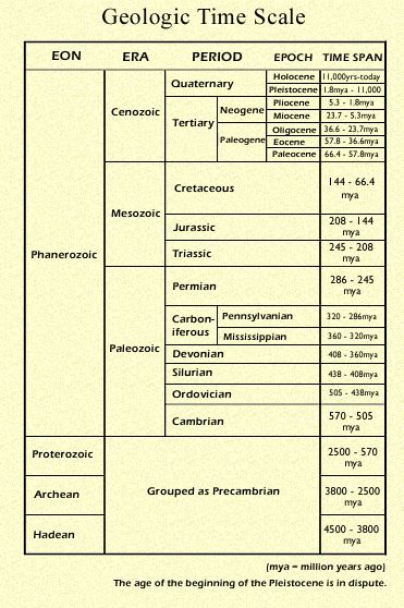 geological time scale essay The bgs geological timechart is based on the geologic time scale 2012 by f m gradstein, j g ogg, m schmitz and g ogg.