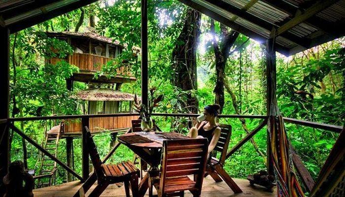 Finca Bellavista - Costa Rica - Ağaç cenneti Costa Rika hır yıl birçok ziyaretçiyi ağırlamaktadır. Burada bulunan ağaç üzerine kurulan evler size oldukça güzel dakikalar sunuyor. Bu evler romantik yapısının yanında, çocuk odaları için çatı katları gibi sayısız imkan sunuyor. Ağaç evlerin etrafı, platformlara bağlı yürüyüş parkuru ve şelalelerle eşsiz bir görsellik sunuyor