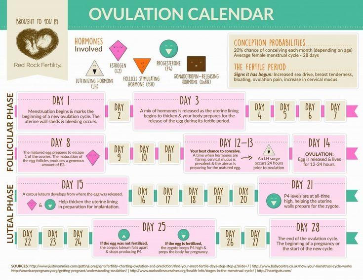 Pin on Operation procreation