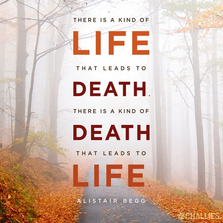 Christian Quotes About Life Classy 1163 Best Christianity Images On Pinterest  Christians Religious