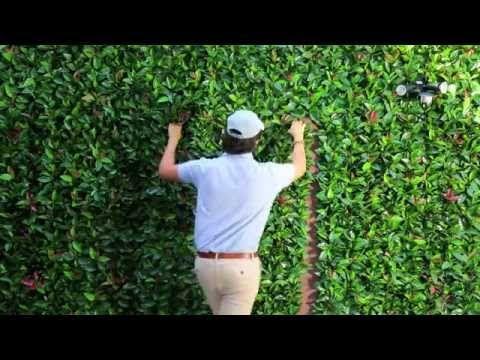 Instalación | Greensmart Páneles y Muros Decorativos de Follaje Artificial