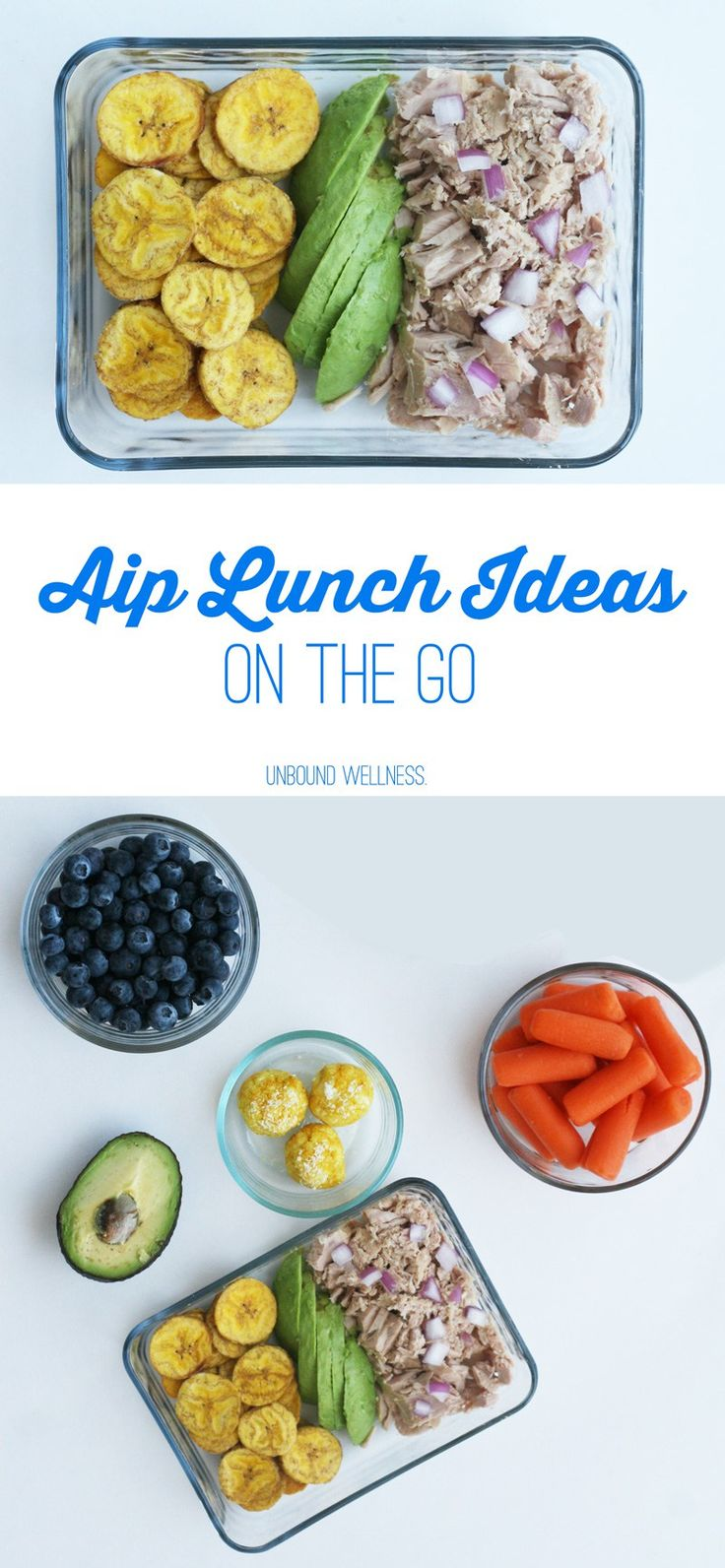 Easy AIP Lunch Ideas on the go