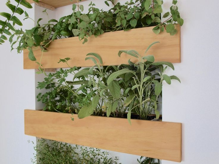 Interior plants can soften a room and add life to your spaces. With an opportunity to create a kitchen feature as part of a house renovation, a green herb wall was the perfect option - and recessing it within the studs creates a subtle point of difference. Heres a guide on how to create your