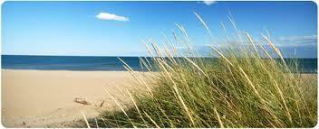 fotobehang natuur - strand zee duin