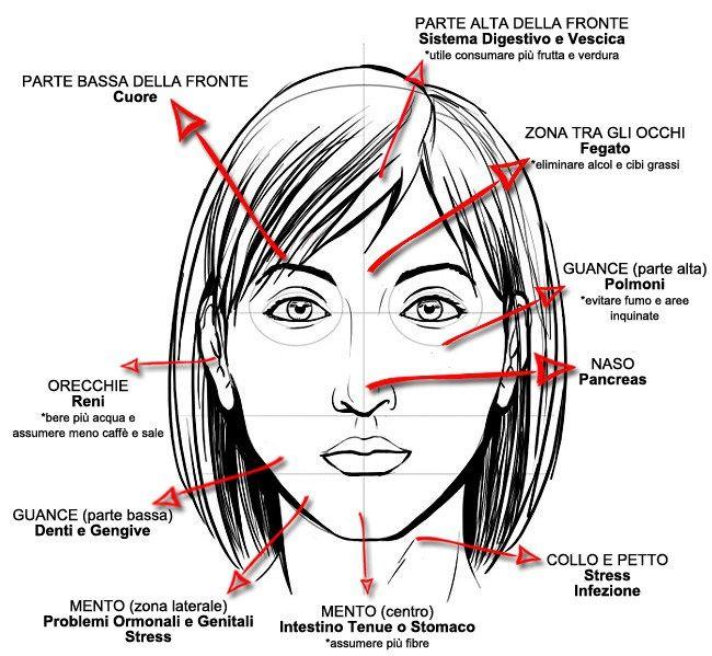 La medicina cinese ritiene che l'acne che compare sulle diverse parti del viso sia una rappresentazione dei problemi presenti in corrispettive parti del corpo. Ad esempio, l'acne sulla parte superiore delle guance è una risposta allo stress dei polmoni e delle vie respiratorie. Il fumo può essere una delle cause. Per questa ragione, per avere un'idea di quali siano gli organi che necessitano di attenzione e cura può essere sufficiente osservare la zona dove l'acne si presenta....