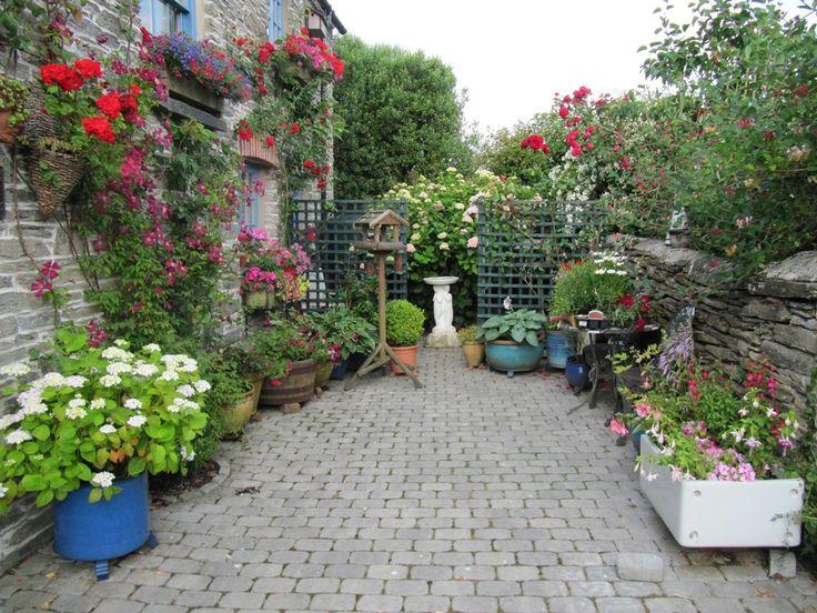plant privacy fence ideas Urban Garden Ideas Garden