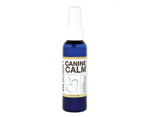 Natural remedy for canine arthritis
