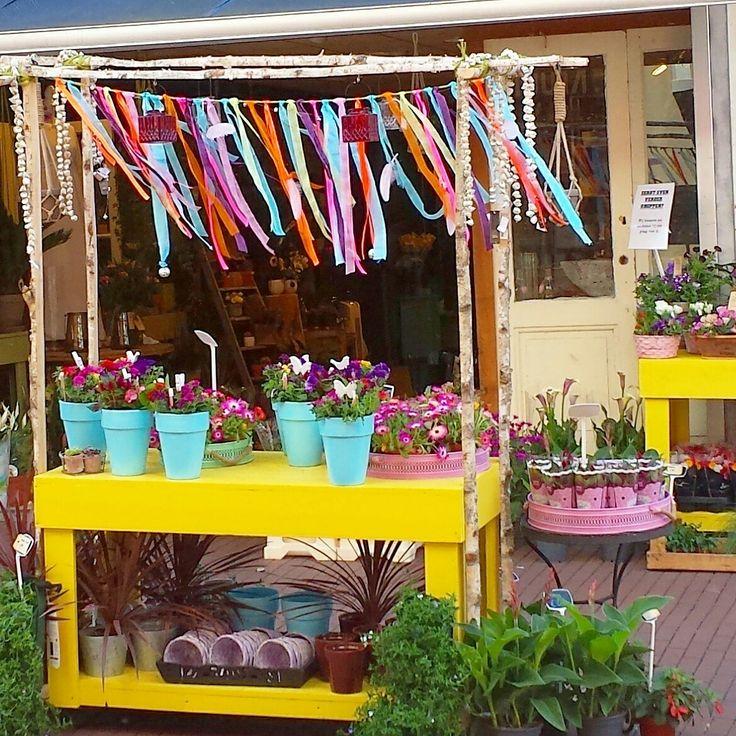 #ibizastyle #ibiza #flowers #tijdvoorbloemen #promenade #zoetermeer #bloemenwinkel #flowershop