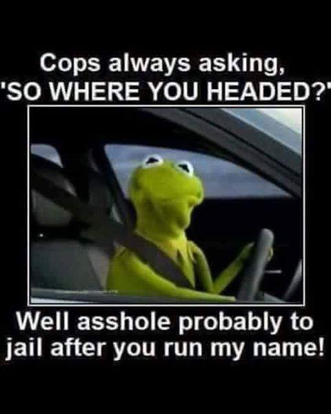 #funnyshit #haha #shitsfunnythough