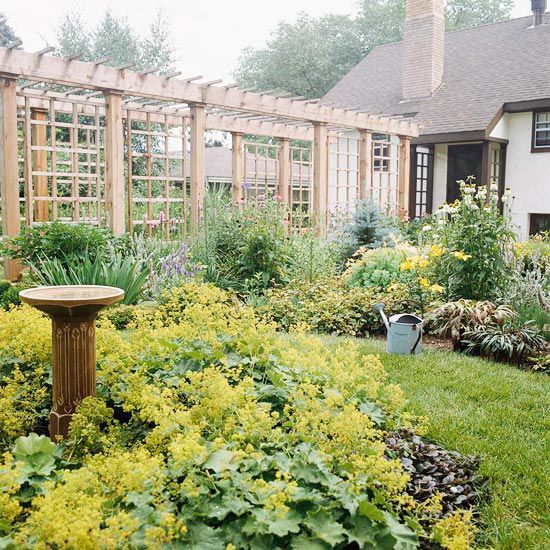 We often think of a pergola as a square structure that provides privacy when you're underneath it. But change the shape and a long, narrow pergola can provide just as much privacy -- but more interest -- than a fence./