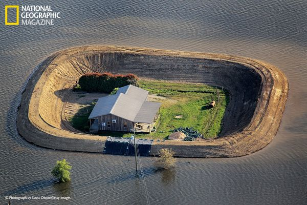 Mississippi - Fortified by a levee, a house near Vicksburg survives a Yazoo River flood in May 2011. Snowmelt and intense rains — eight times as much rainfall as usual in parts of the Mississippi River watershed — triggered floods that caused three to four billion dollars in damage.