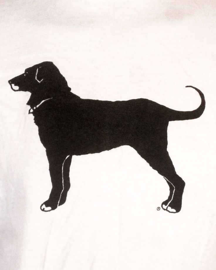 vtg 80s 90s retro 1992 Black Dog Pub Tavern T-Shirt Martha's Vineyard clinton L