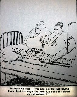 Far Side Cartoons