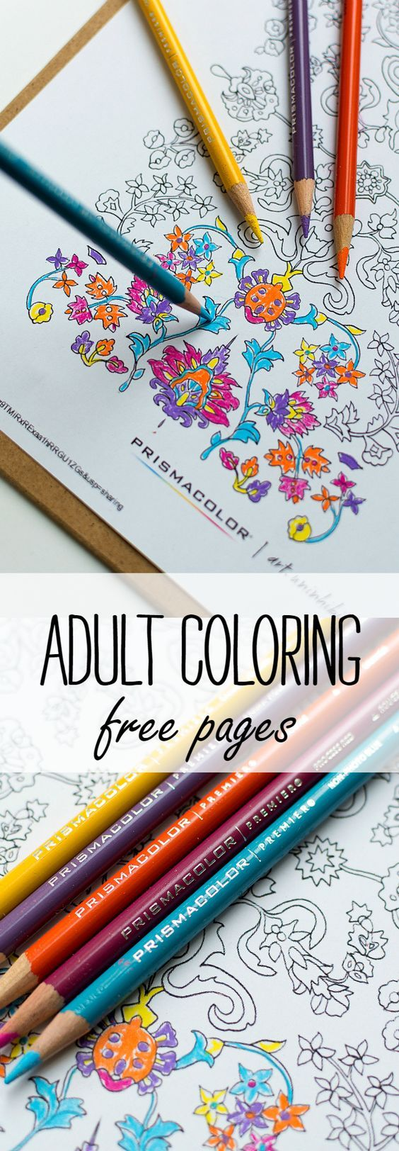 Coloring pages coloring book printable - Free Printable Adult Coloring Pages Color Them With Pinprismacolor Pencils And Markers From