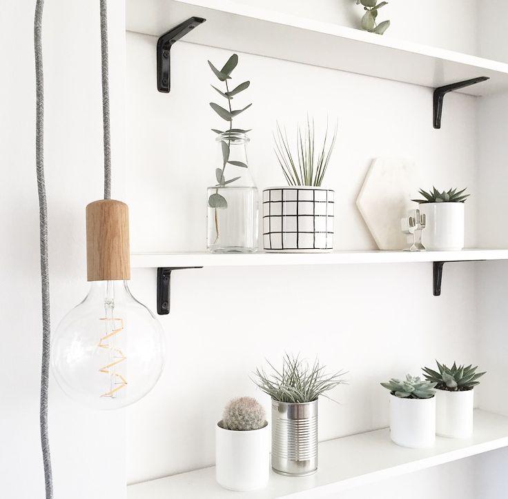 [Pflanzen und Hamburg] ↠ Urban Jungle Bloggers meets Lokaldesign ♡