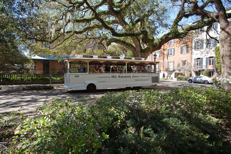 Old Savannah Tours