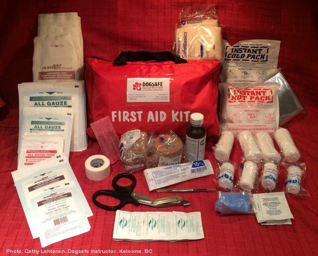 DOGSAFE Canine First Aid Kit - Large