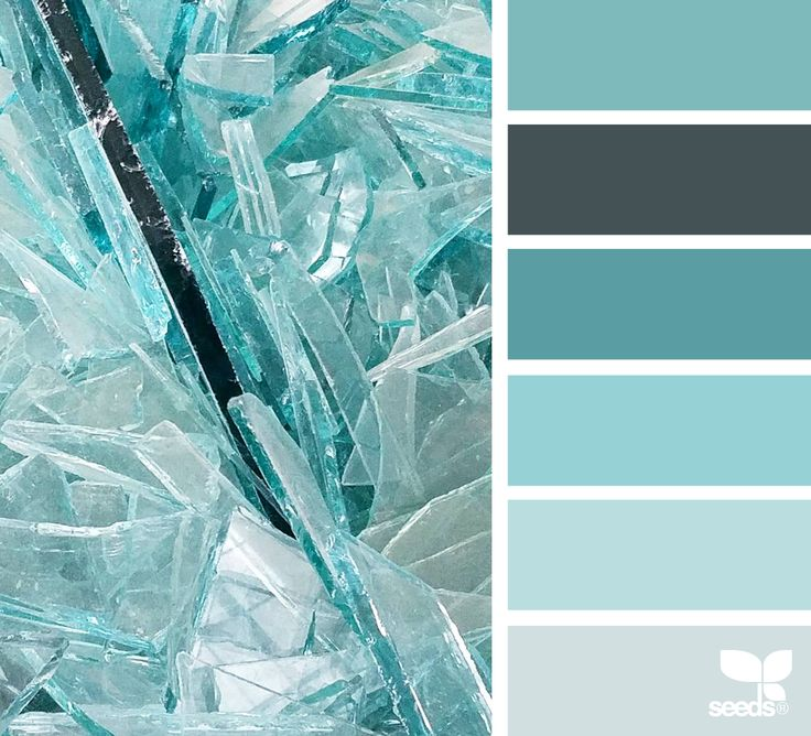 { color shard } image via: @robinzachary