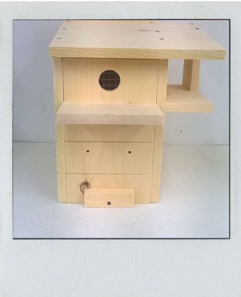 Angled Roof Squirrel Nesting Box. by NutsAboutSkwerls on Etsy