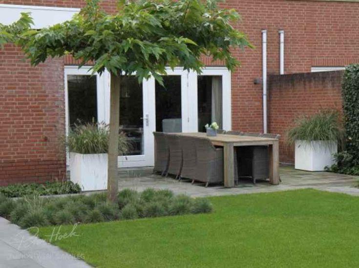 Hier vindt u foto's van veel voorbeeldtuinen die wij bij klanten gerealiseerd hebben. Neem een kijkje en laat u inspireren voor uw tuin. Bent u overtuigd en wilt u ook een mooie tuin, neem dan contact met ons op.