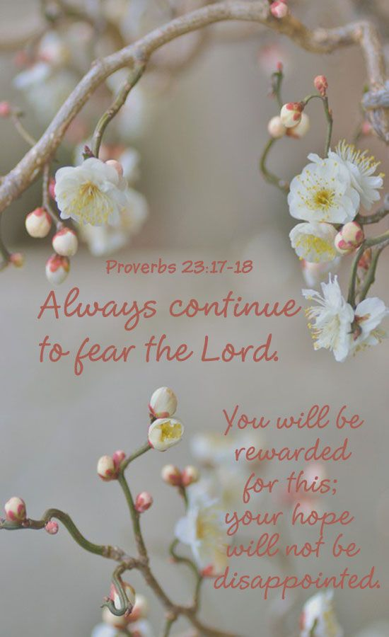 Proverbs 23:17-18 ~ To 'fear' God is to be reverent and in AWE of Him, His majesty, His power and the undeserved gifts He has given us:  Jesus, the Spirit, His mercy, His presence, His Blessings, our creation for fellowship with Him, everything we are and everything Good that we have.