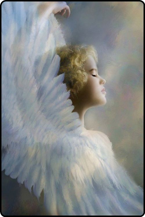 there are angels among us…