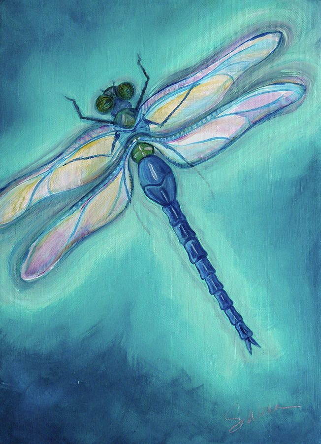 Dragonfly Drawings | Dragonfly Painting by Sabina Espinet - Dragonfly Fine Art Prints and ...