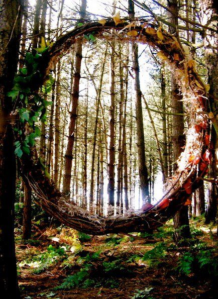 """""""Portal Through The Woods, by Asphodel-Foxx * piece created using only the materials found fallen in the forest )O("""
