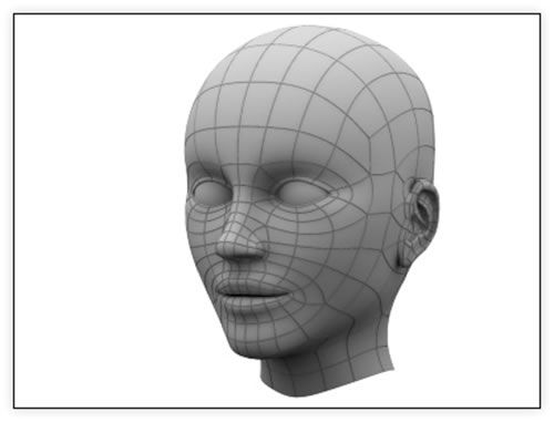 low poly face wireframe