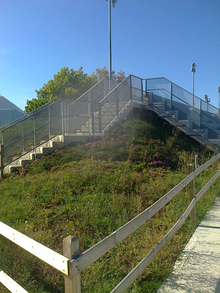 Polisportiva Riccione http://www.riccionesocialclub.it/interviste/stadio-del-nuoto-riccione-pilastro-indiscusso-dello-sport-italiano