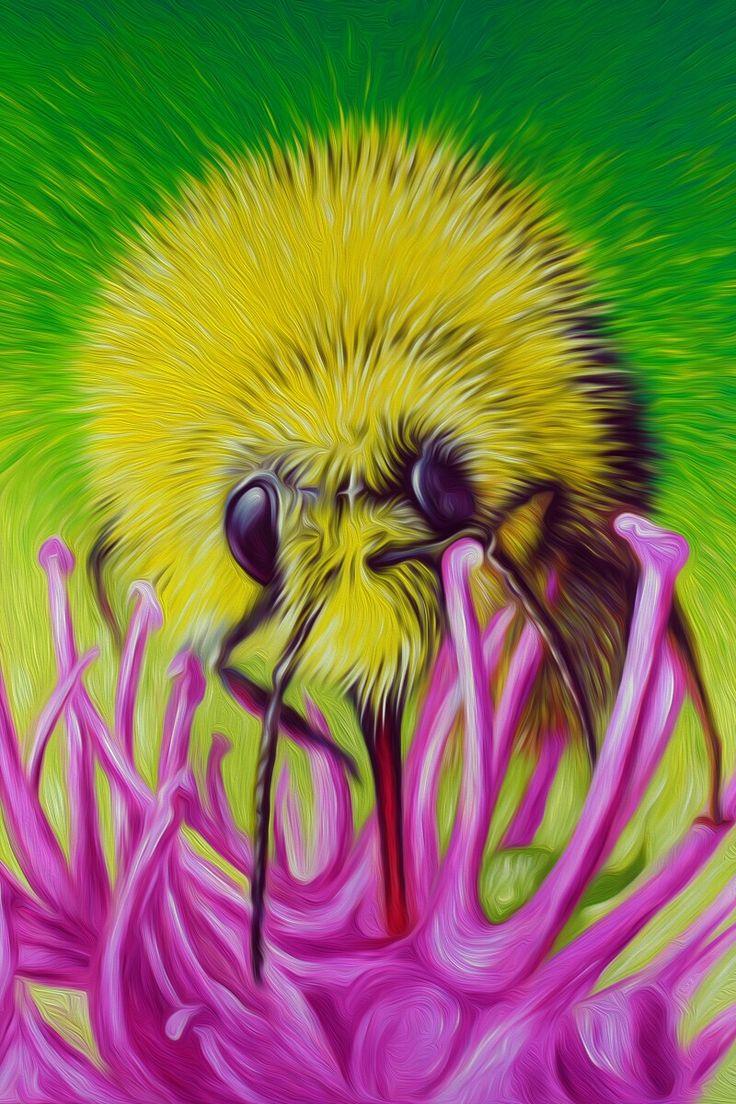 Bumblebee by Simon Knott #artist wallart