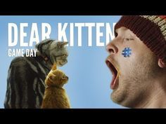 "Have you ever watched any of the ""Dear Kitten"" videos on YouTube?   The newest installment features the wise and witty cat explaining the ins and outs of the #SuperBowl to his kitten sidekick."