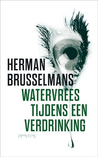 Watervrees tijdens een verdrinking is het soort liefdesroman waarop Herman Brusselmans in de Nederlandstalige letteren een patent heeft. Vrouwen en mannen staan naast elkaar,