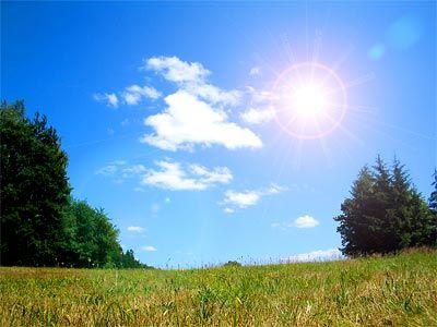 warm sunny days
