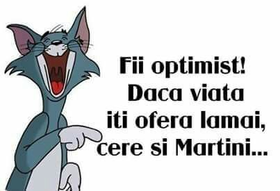 Be optimistic if life give you lemons ask about Martini too
